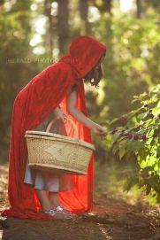 chapeuzinho-vermelho-4