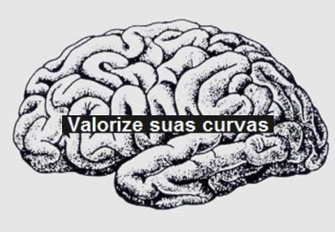varorize_curvas_cerebro